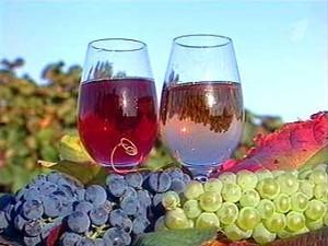 Hungarian wine culture